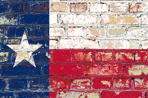 Texus State Flag